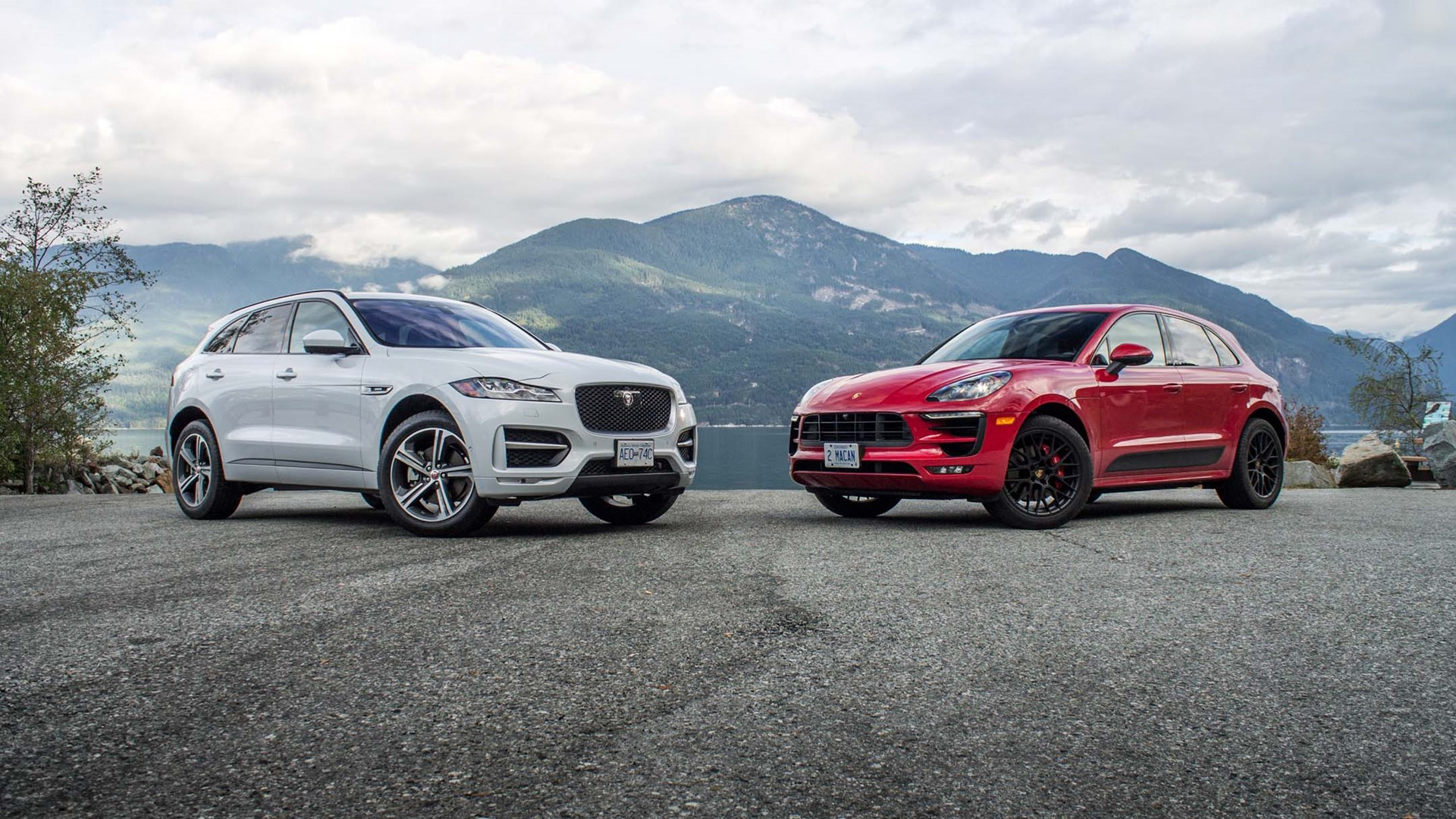 comparatif f pace macan