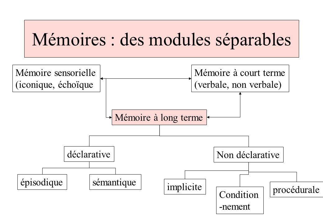 test de memoire a court terme