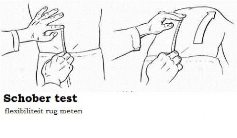 test de schober