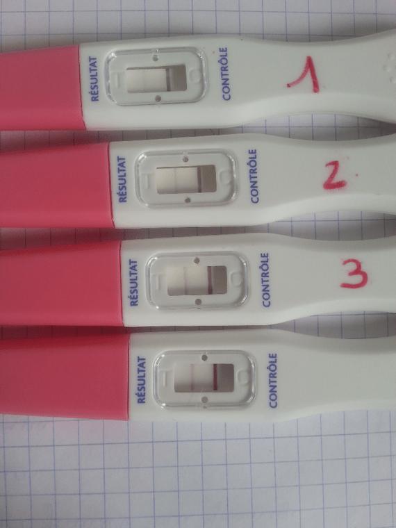 test de grossesse negatif a 14 dpo mais enceinte